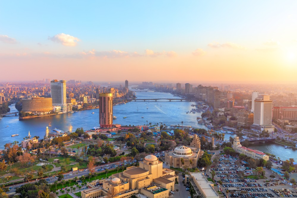 Translation in Cairo